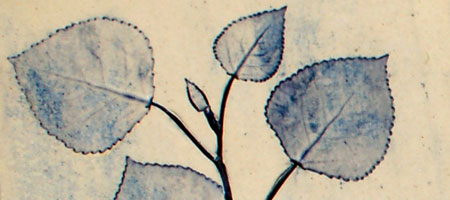 gen_gallant_natureimprint